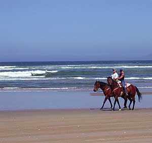 California Horseback Riding, Beach Rentals, Rides, Horse Riding