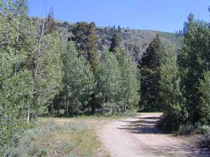 Aspen Grove Camping for RVs