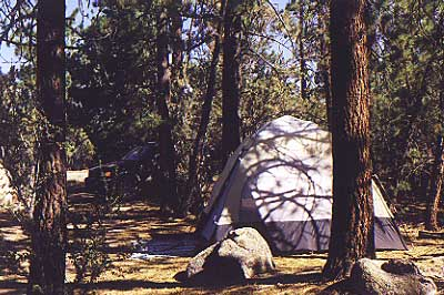 Big Bear Campsites