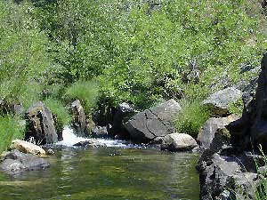 Creekside Camping California
