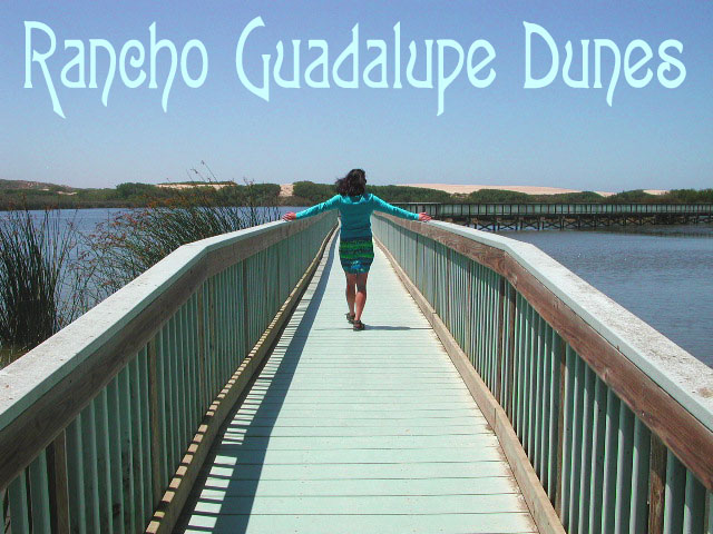 Gualupe Dunes Park