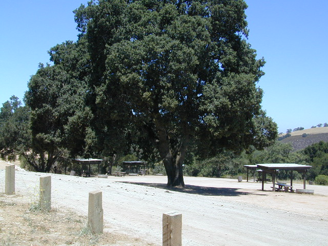 hollister hills 4x4 Campgrounds