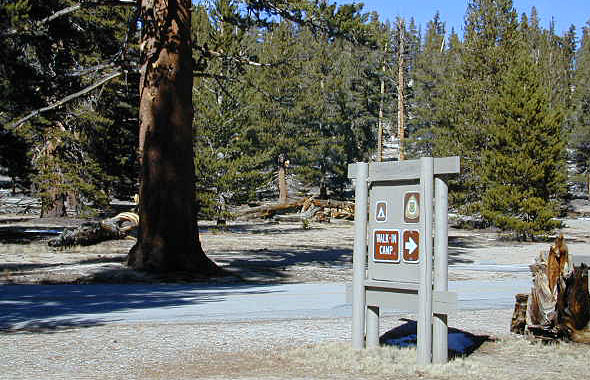 Cottonwood Campsites