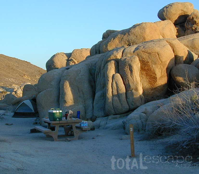 Joshua Tree Campground Joshua Tree Park Map Joshua Tree Park CA