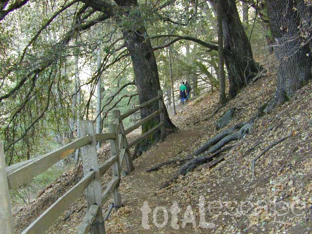 hiker at Palomar