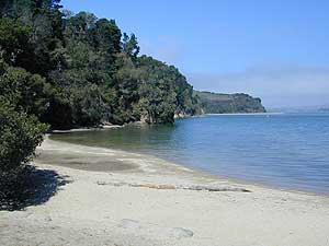 San Francisco Weekends Tomales Bay State Park California