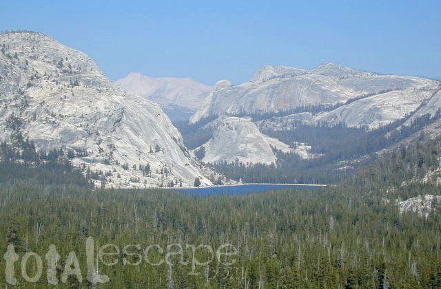 Teneja Lake, Hwy 120. Yosemite National Park