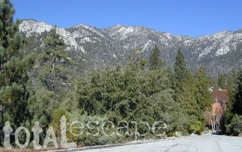 Idyllwild Camp Granite