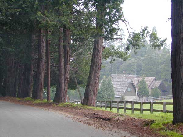 California Horse Camps
