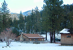 Cabins Rentals California