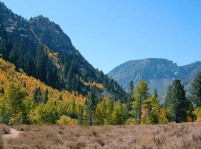 June Lake Autumn