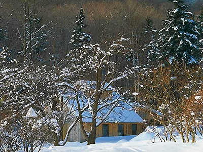 Cabin Rentals in Snow
