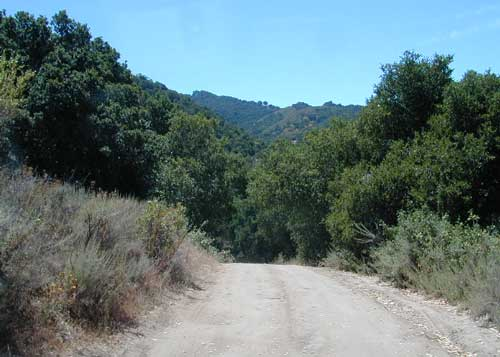 Dirt Roads in Hollister