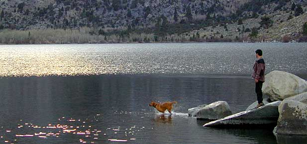 Convict Lake w/ dogs