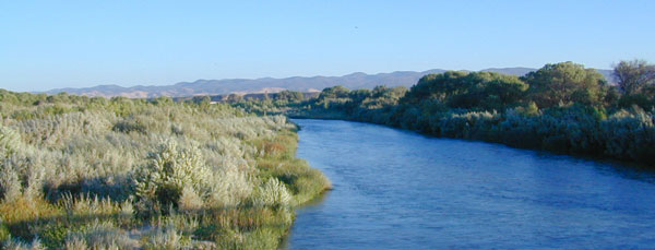 Salinas River Fishing California Highway 101 Stretch Stop