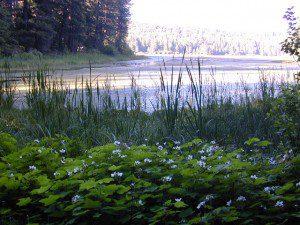 Snake Lake, California