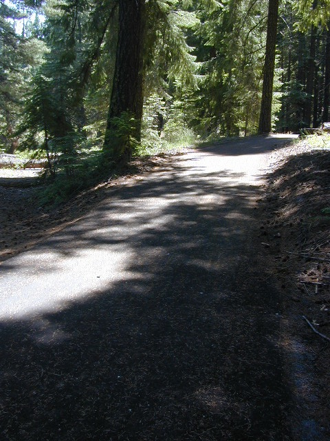 Bike Trail Lake Almanor