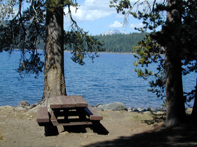 Juniper Lake Table