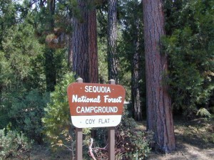 National Forest Campground