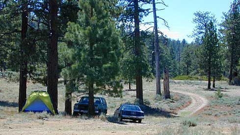 Primitive Campsites