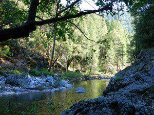 Sierra Rivers