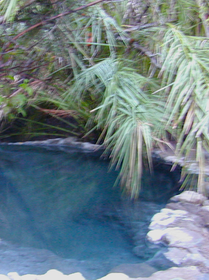 gaviota pools