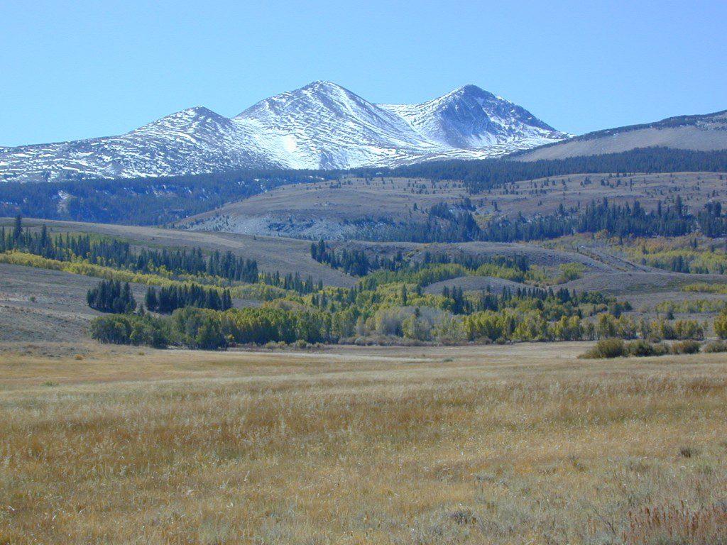 Dunderberg Meadow