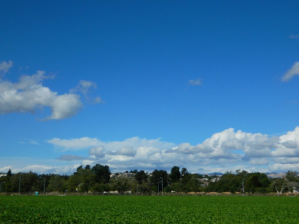 Arroyo Grande Farmlands