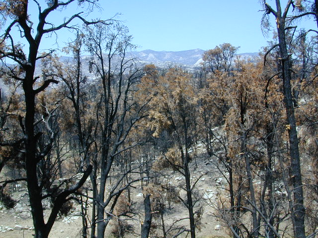 Manter Fire, Dome Land Wilderness