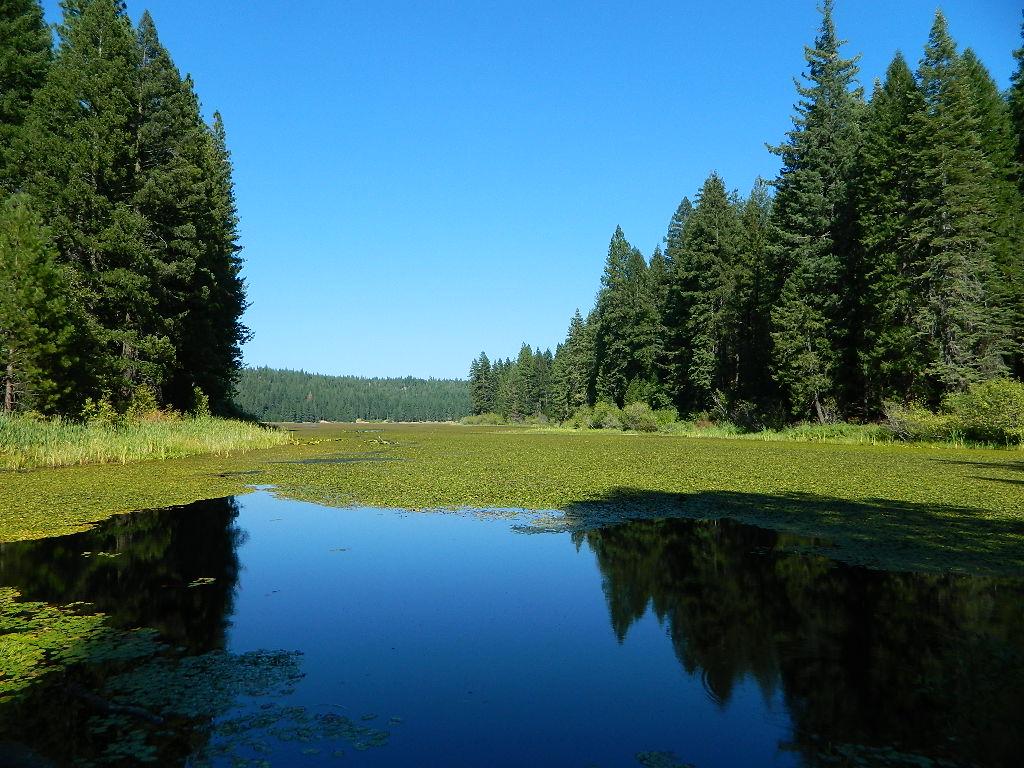 Lake Camping