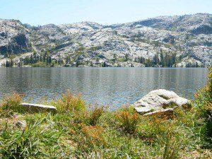 Grassy Picnic Faucherie Lake