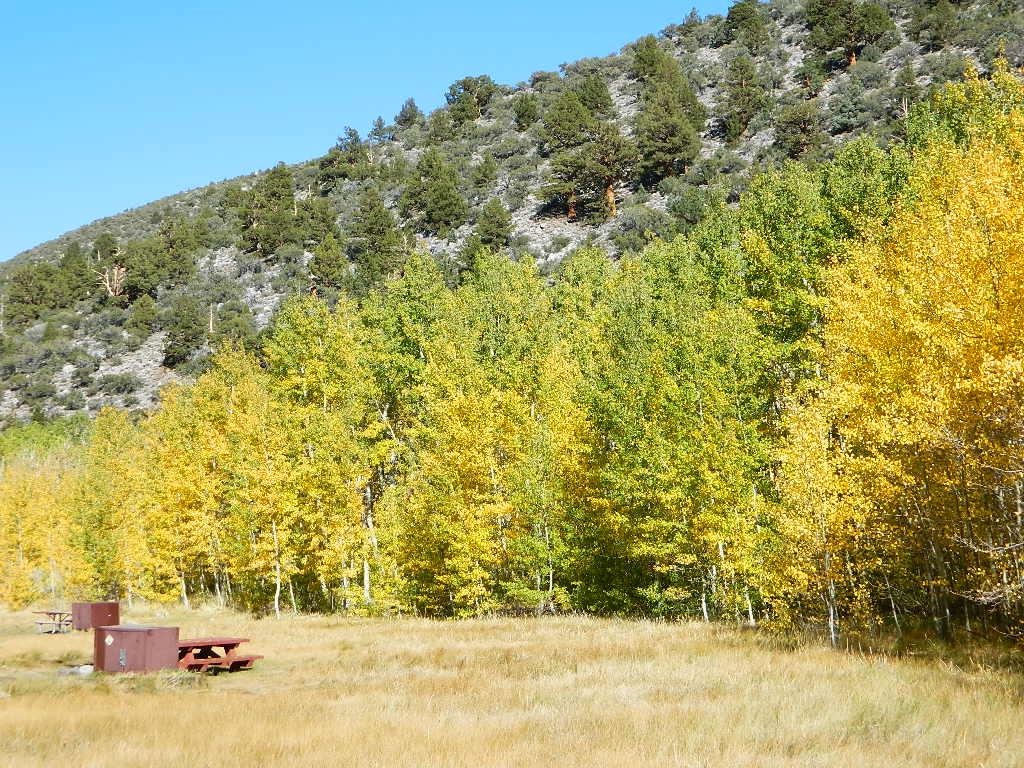 Rock Creek Autumn Total Escape