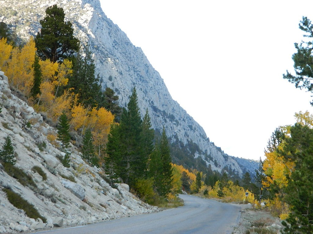 Rockcreek Road
