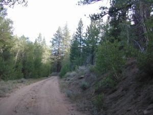 log cabin mine road