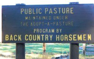 publicpasture