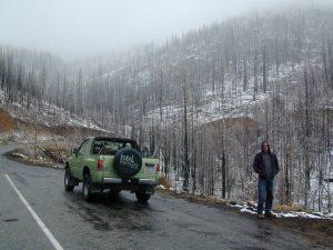 Snowy Springs