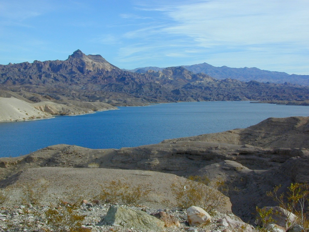 Lake mohave total escape for Lake mohave fishing