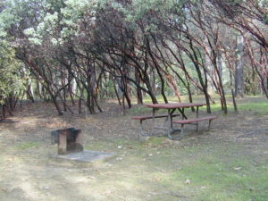 Oak Bottom Campground