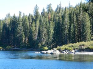 All Lake Campgrounds Total Escape