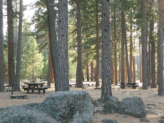 spacious camps
