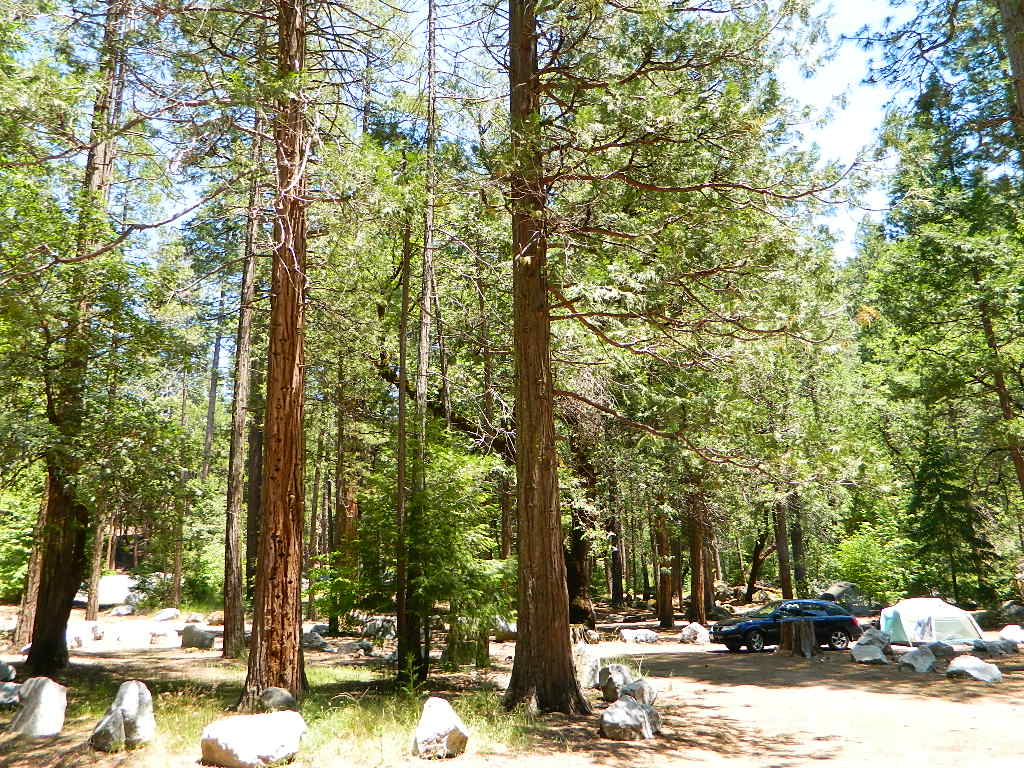 mokelumne camp