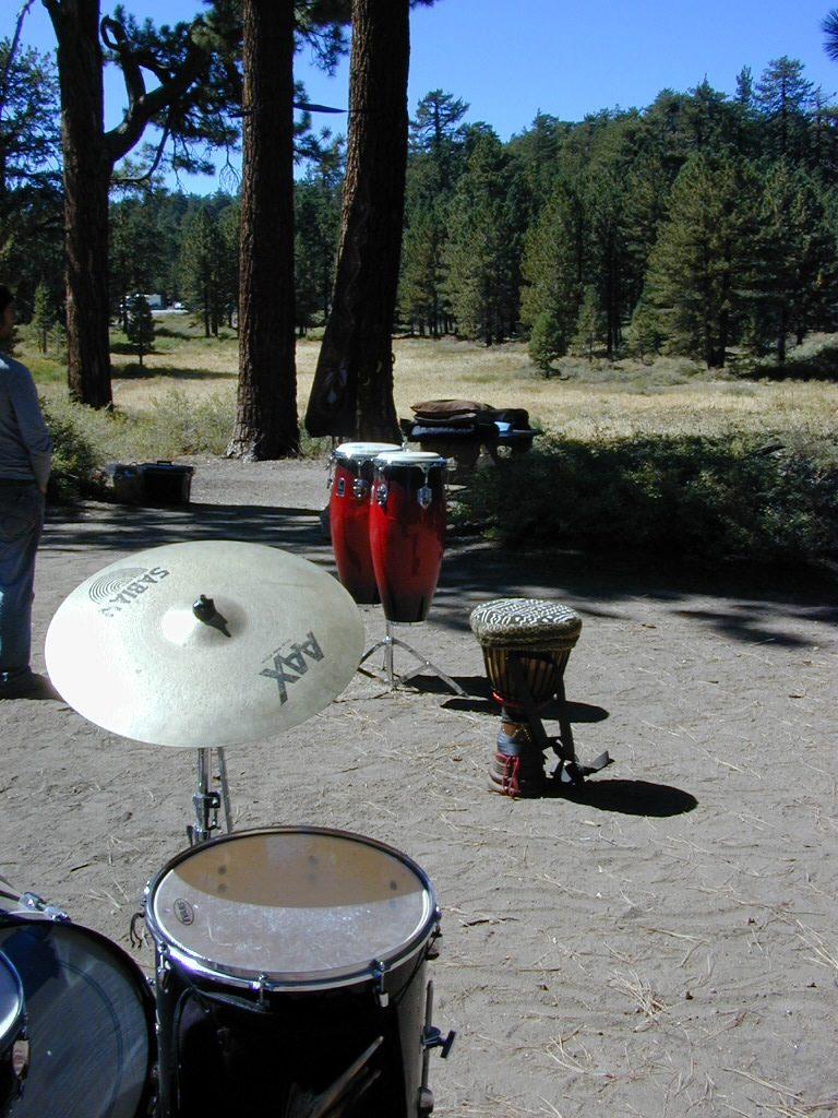 drummersout