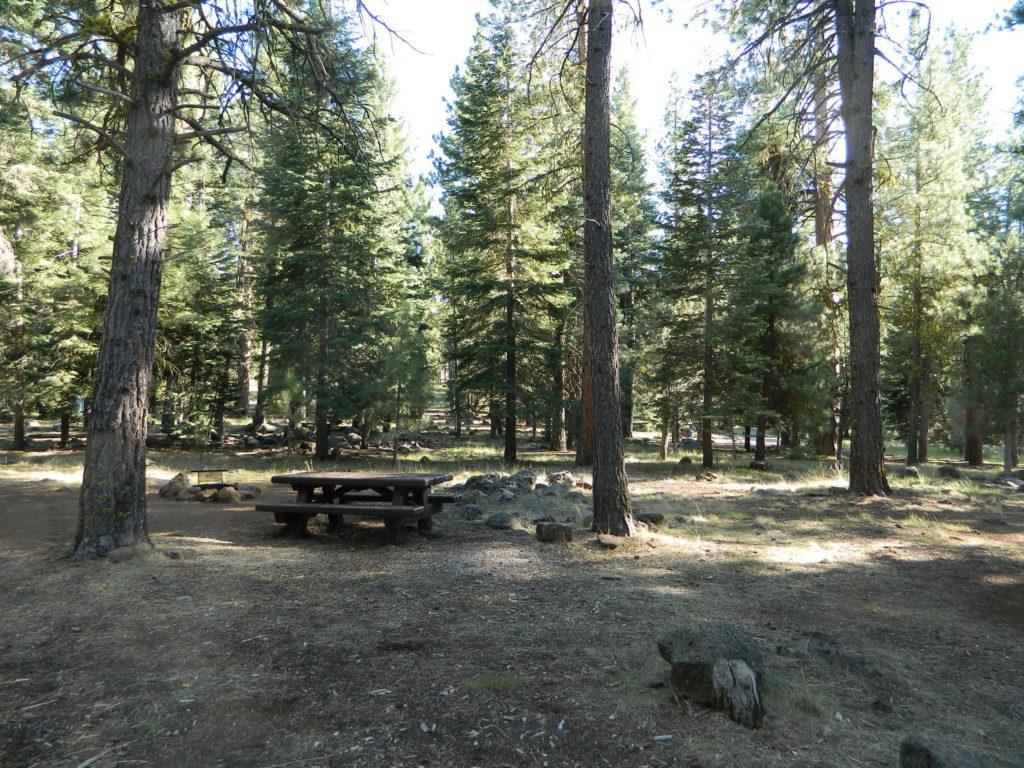 Large Campsites