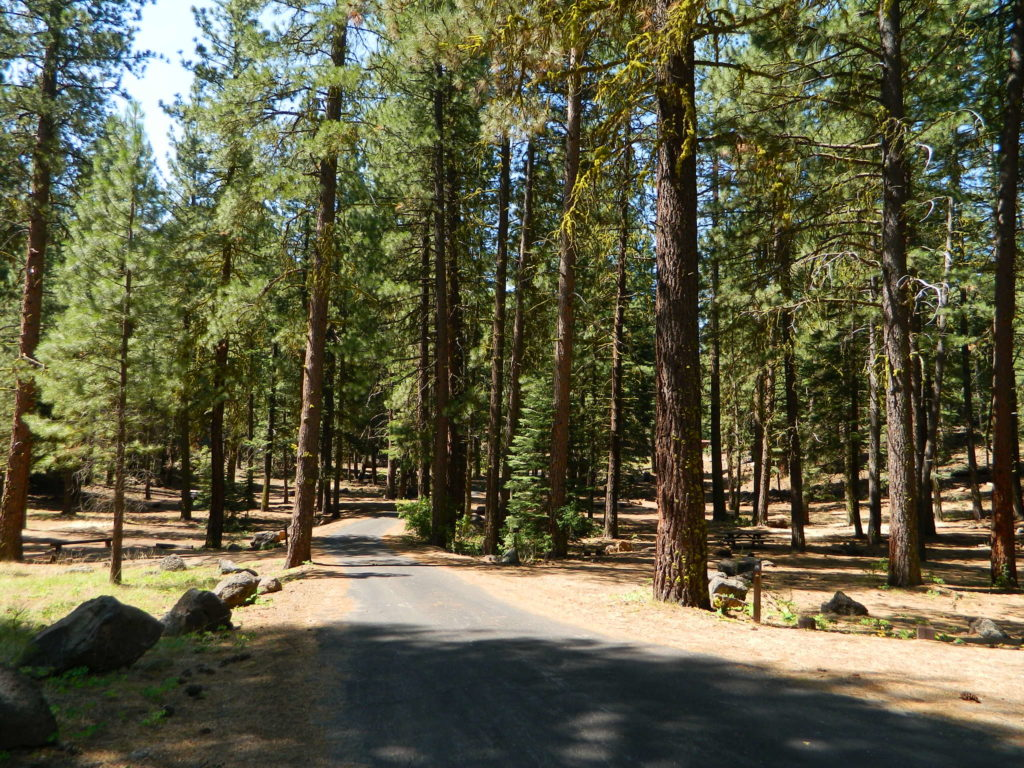 paved camp loop